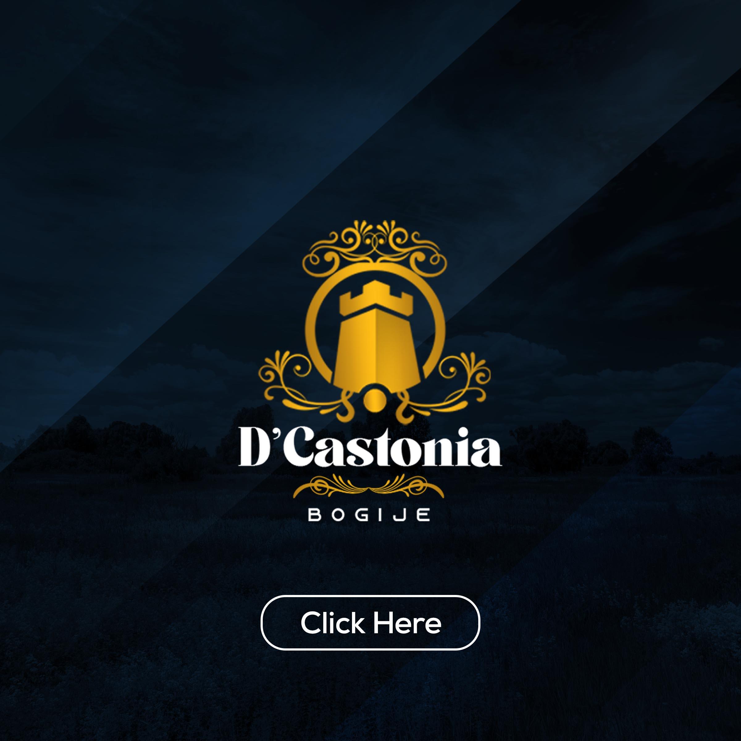 D'castonia click Project (2)