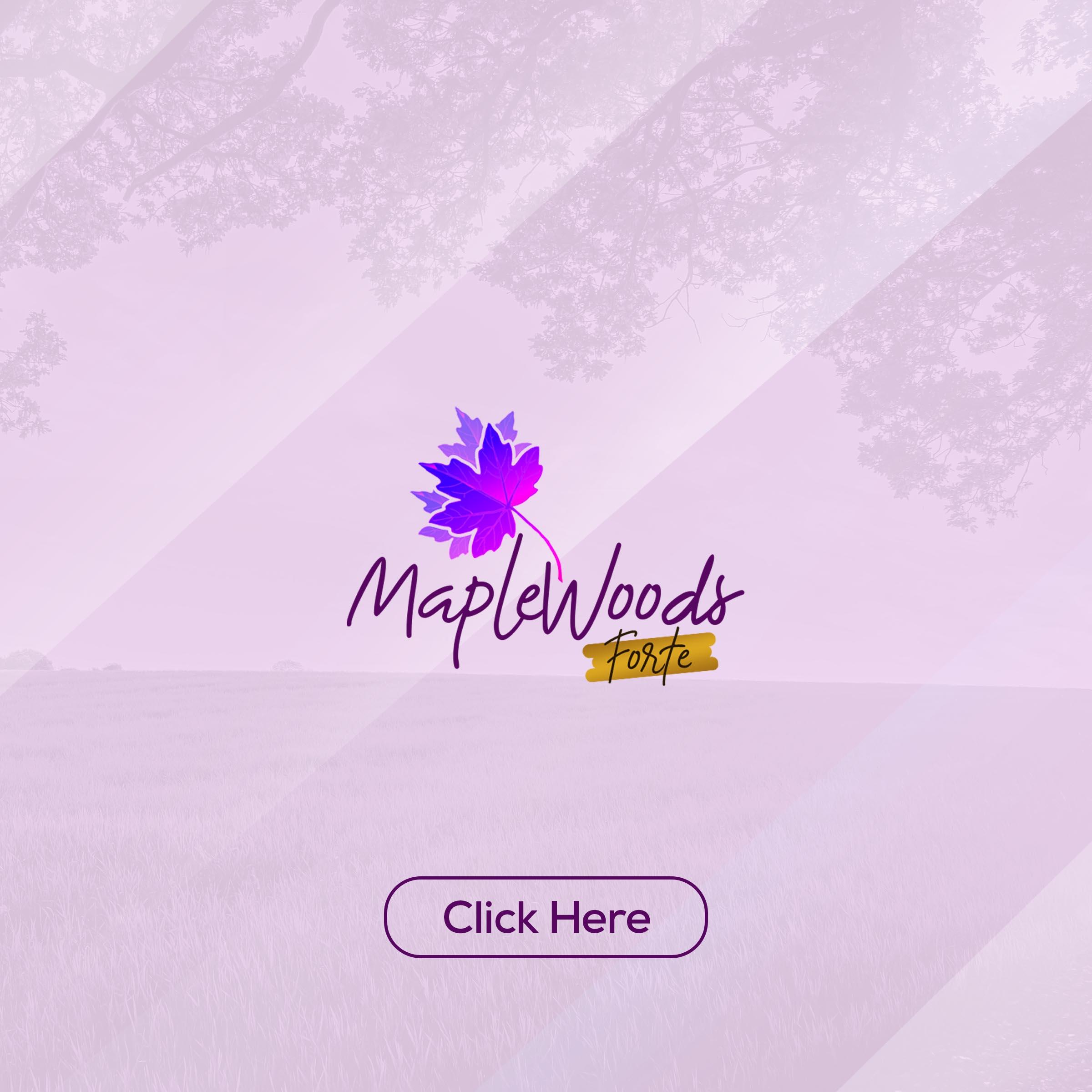 MarpleFor click Project (2)